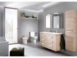Roca Debba Toilet Suite